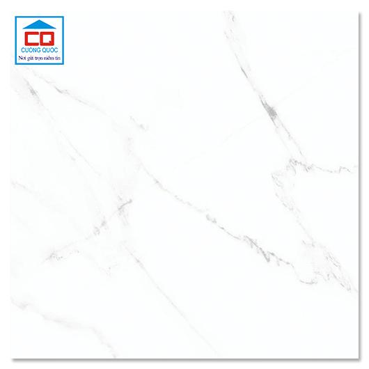 Gạch ốp lát 25x25 Đồng Tâm 2525CARARAS002 chính hãng