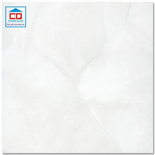 Gạch ốp lát 30x30 Đồng Tâm ceramic 3030NGOCTRAI001