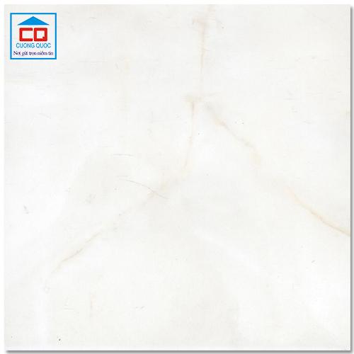 Gạch lát sàn ceramic Đồng Tâm 3030NGOCTRAI002