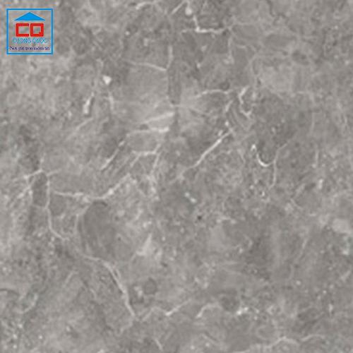 Gạch lát nền Đồng Tâm 3030ANDES003 ceramic cao cấp