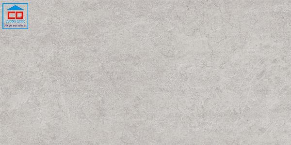 Gạch ốp lát 30c60 Đồng Tâm 3060GECKO001 chống trơn
