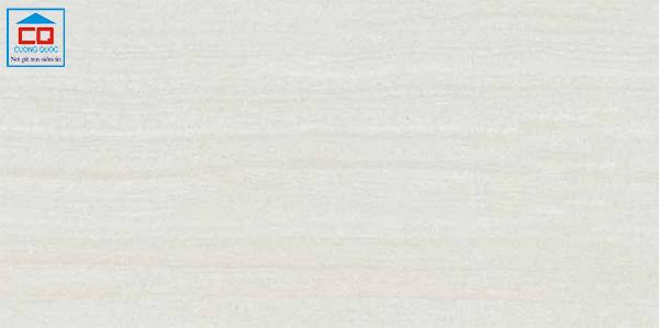 Gạch chống trơn Đồng Tâm 3060GECKO006 chính hãng