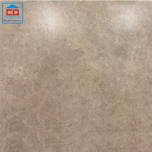 Gạch lát nền granite Đồng Tâm 4040THACHANH007