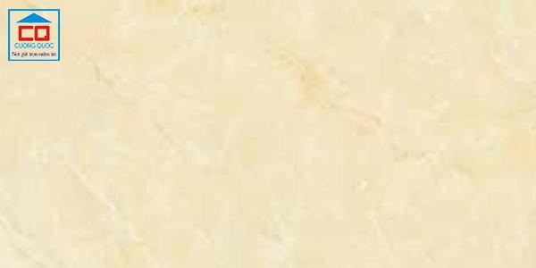Gạch ốp lát granite Đồng Tâm 4080TAYBAC001 chính hãnng