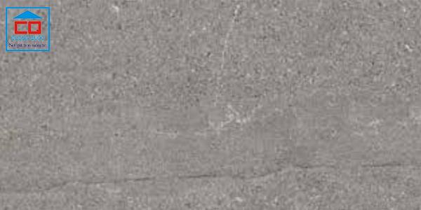 Gạch granite Đồng Tâm 4080TAYBAC004 chính hãng
