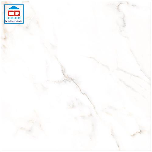 Gạch lát nền granite Đồng Tâm 6060MOMENT001