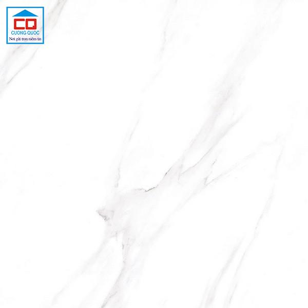 Gạch ốp lát Đồng Tâm 6060DA007-FP chính hãng