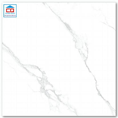 Gạch lát nền 60x60 Arizona AZ6-GP6601 men bóng