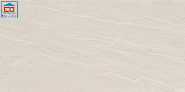 Gạch ốp tường Taicera 60x30 G63425