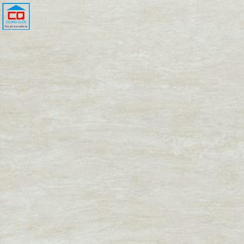 Gạch lát nền Taicera 60x60 G68982