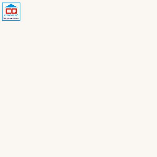 Gạch lát nền Taicera 60x60 P67615N
