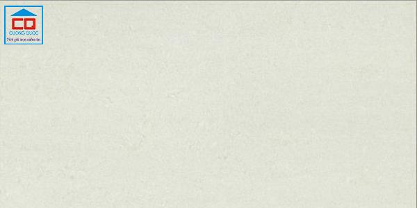 Gạch ốp tường Taicera PC600*298-312N