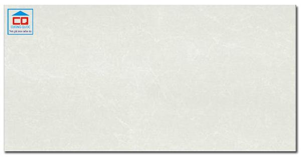 Gạch ốp tường Taicera PC600x298-762N cao cấp