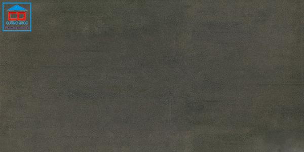 Gạch ốp tường Taicera 30x60 G63939