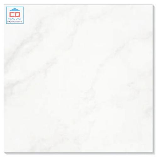 Gạch lát nền Taicera P67418N granite mài bóng
