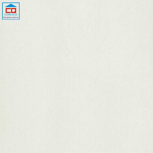 Gạch lát nền Taicera 60x60 P67312N bóng kiếng