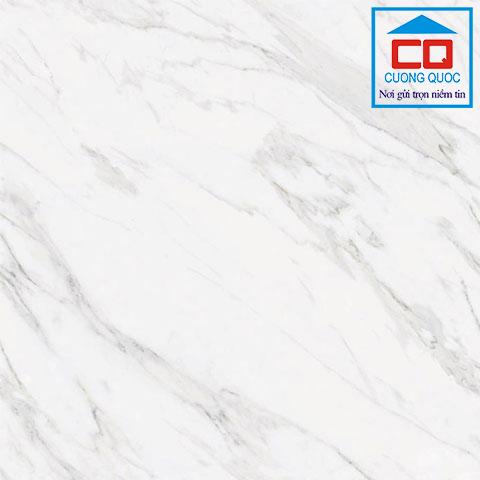 Gạch Thạch Bàn TGB80 - 0011.0 granite lát nền