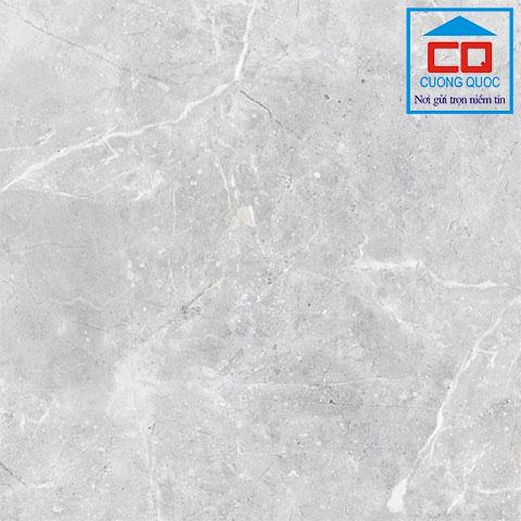 Gạch Thạch Bàn TGM60 - 0021.0 - Gạch granite men khô