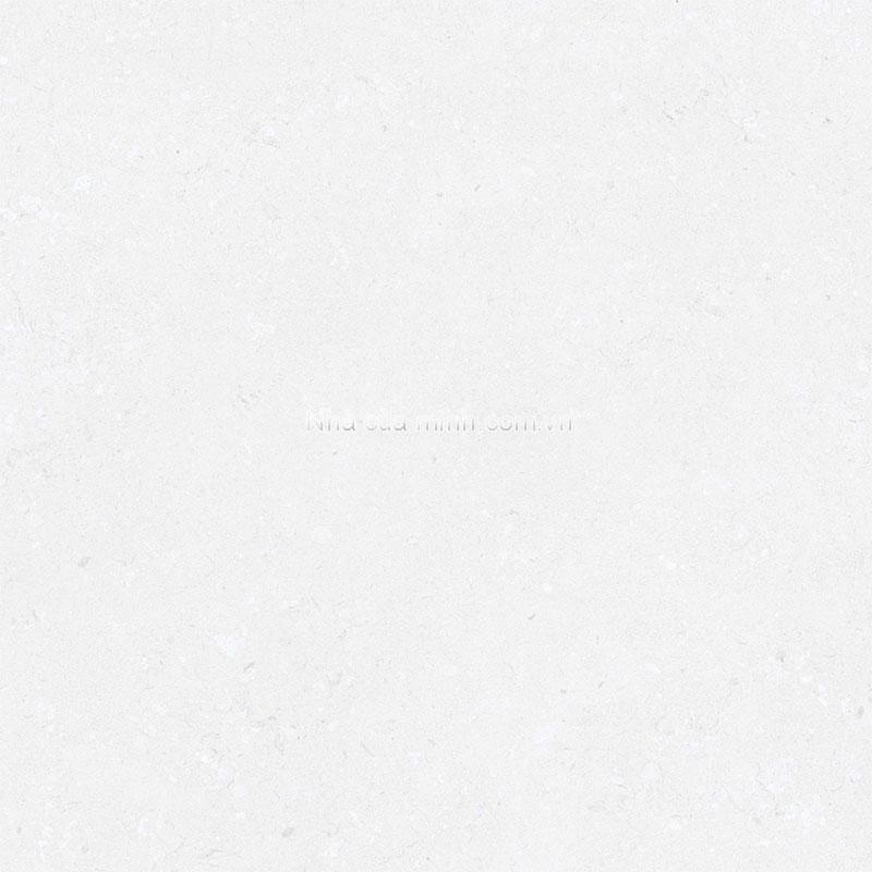 Gạch lát nền 300x300 Đồng Tâm 3030GECKO001 giá rẻ