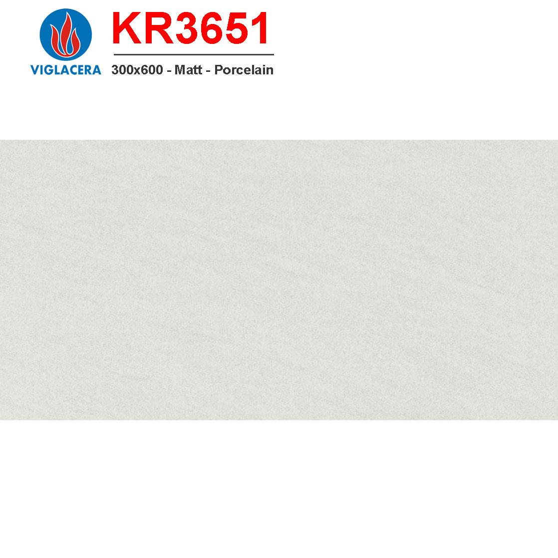 Gạch ốp lát Viglacera 300x600 KR3651 giá rẻ