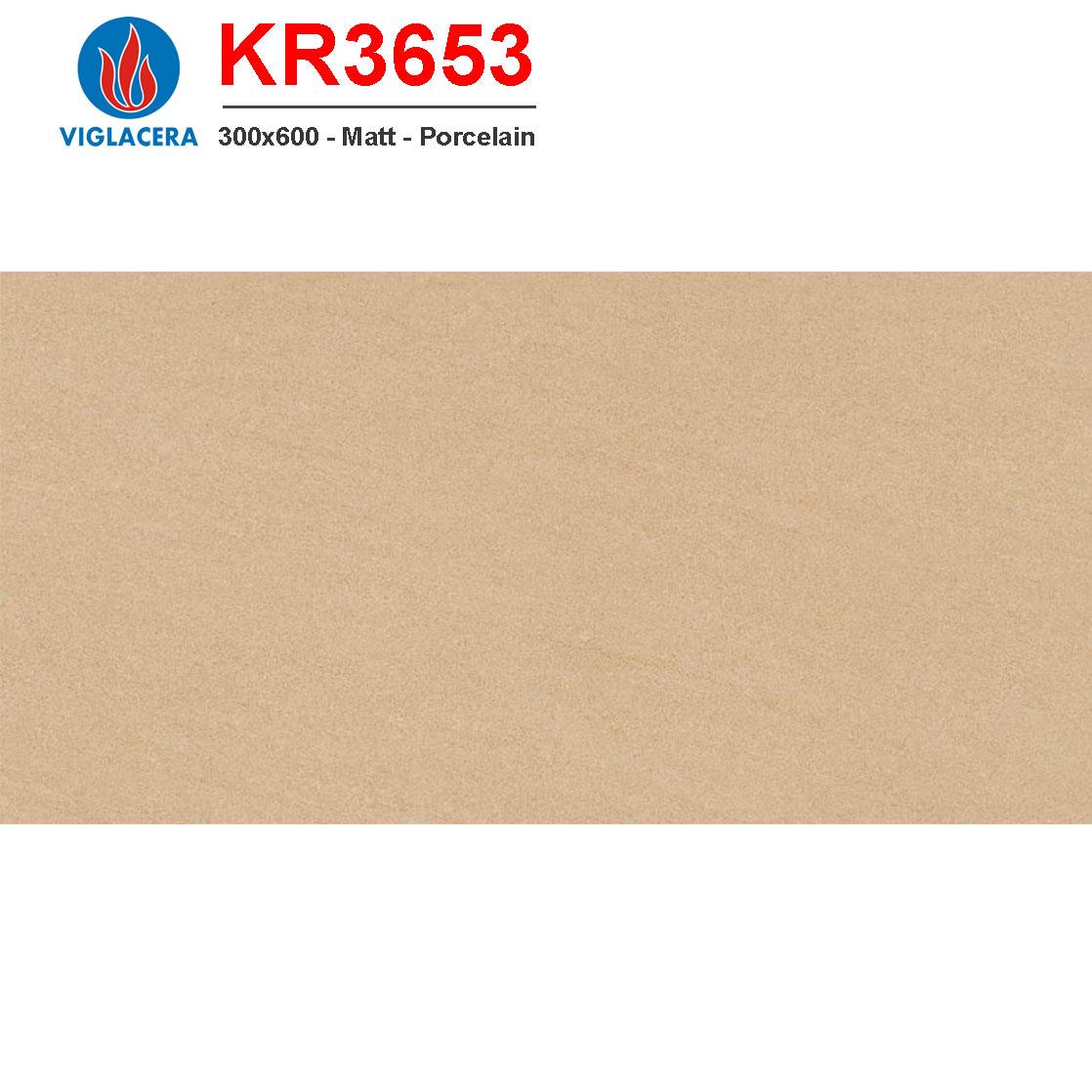 Gạch ốp lát Viglacera 300x600 KR3653 giá tốt