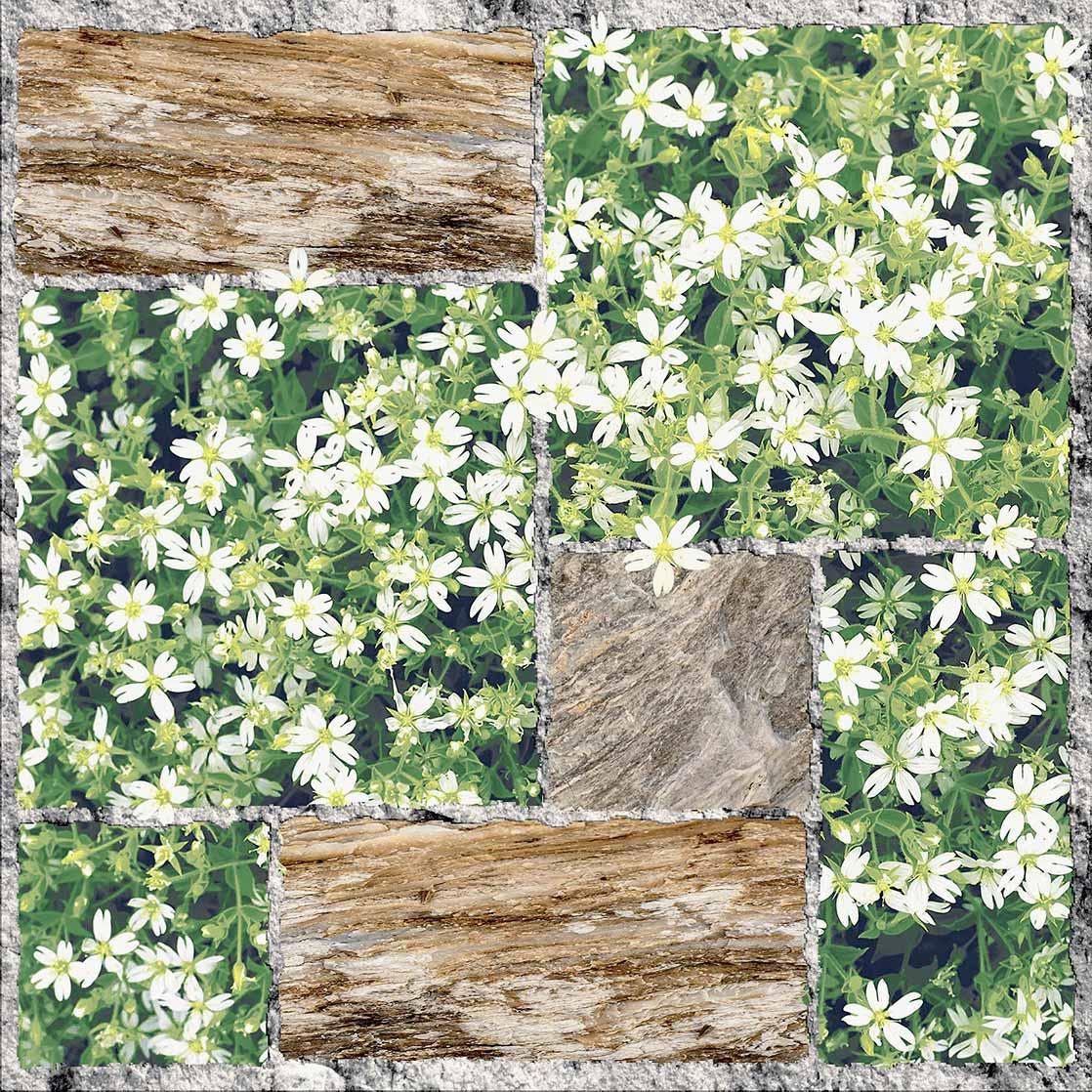 Gạch lát sân vườn Viglacera SA505 giá rẻ