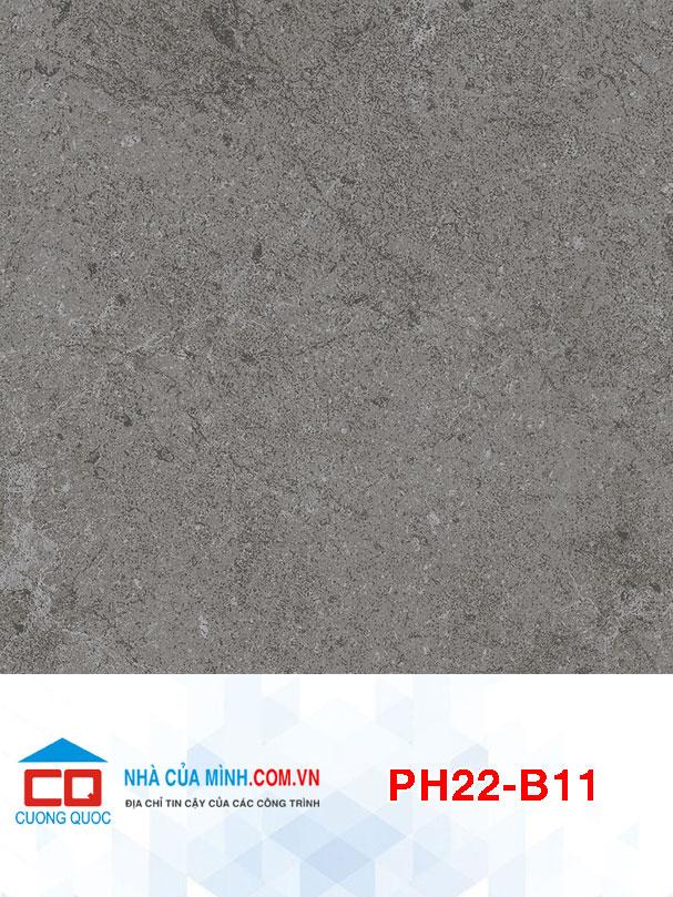 Gạch bông lát nền Viglacera PH22-B11 giá rẻ