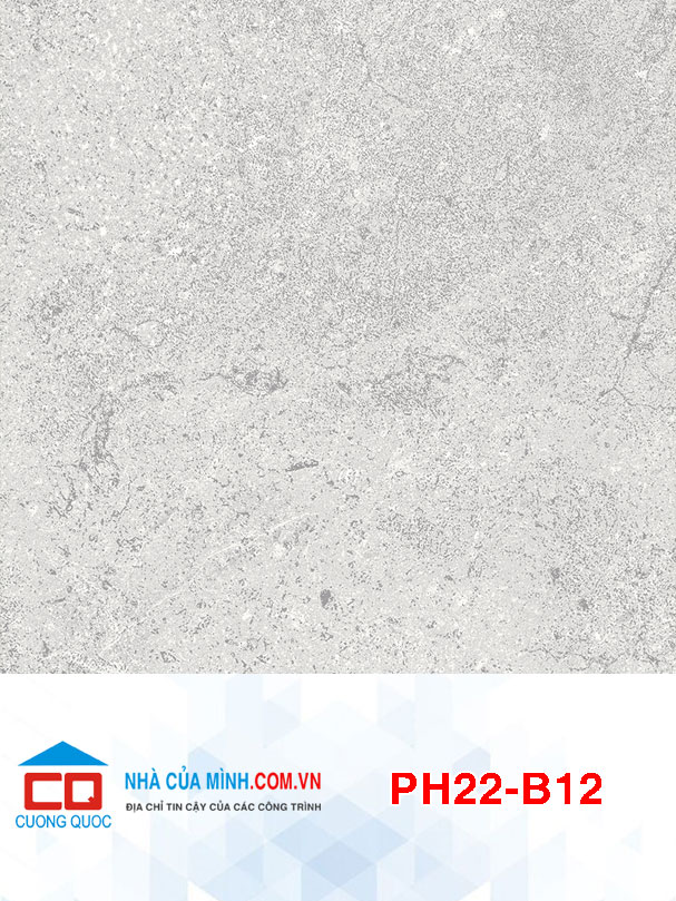 Gạch bông 200x200 Viglacera PH22-B12 giá rẻ